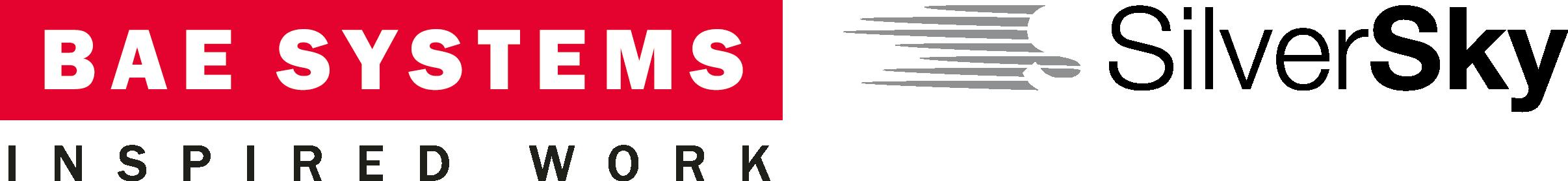 silversky ai dual logo web