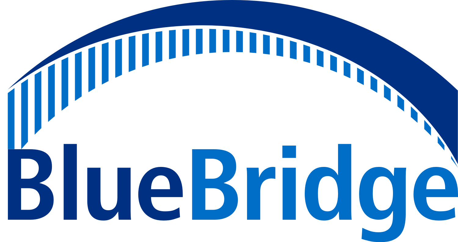 BlueBridge Networks